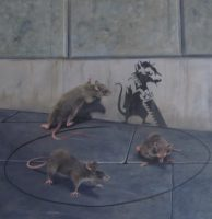 Robert Oxley Rats Vices