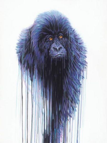 Robert Oxley Virunga