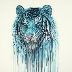Maltese Blue by Robert Oxley